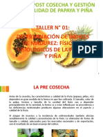 Taller 1 Determinación de à ndices de Madurez