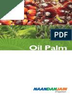 OilPlam.pdf