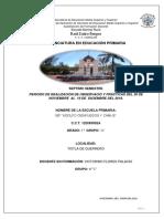 informe de practicas vic.docx