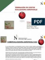 ppt final.pdf
