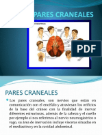 PARES CRANEALES - copia.pptx