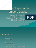 Role of Sperm on Embryo Quality