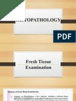 Fresh Tissue Examination