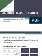 Presentación terapéutica antibióticos