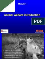 Module 1 Animal Welfare Introduction