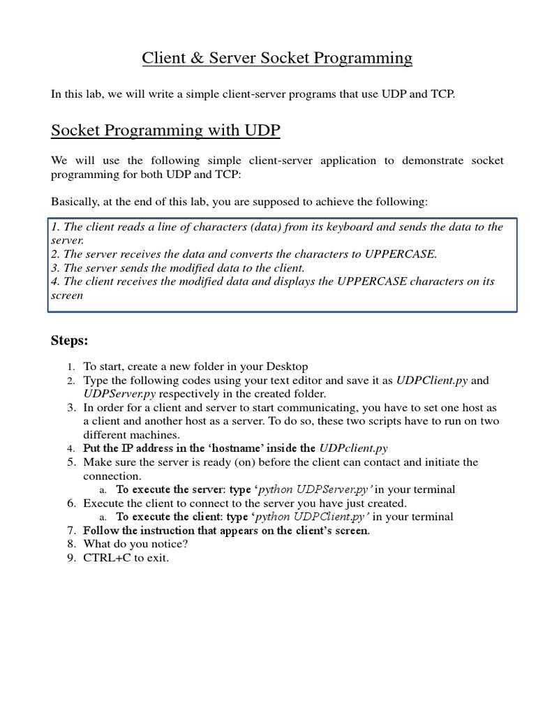 Socket Programming - Client and Server pdf | Network Socket | Client