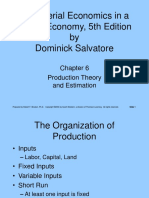 255459_141539_Production theory & estimation.ppt