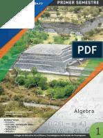 Cecybook Final Algebra Con Nueva Imagen1 1