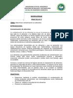 PRACTICA DE LABORATORIO N°3