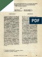 chontaduroo.pdf