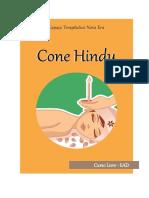 apostila_cone_hindu.pdf