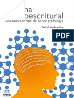 Sistema_Neuroescritural.pdf.pdf