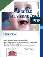 desarrollo dental.pptx
