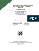 BIOINDIKATOR BIOLOGISPENGUJIAN KUALITAS AIR SUNGAI BRANTAS DI JODIPAN DAN SENGKALING.docx