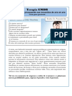 Que Es EMDR Cuadernillo Para Pacientes 2017
