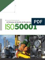 MANUAL ISO 50001