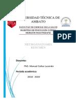 resumen neuroimagen