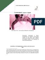 cp008193.pdf