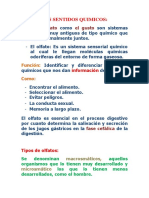 5. Clase de sensopercepción quimico (2).docx