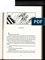 Niculcea1.pdf