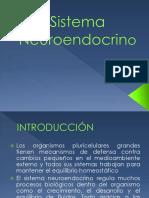 Glandulas y Hormonas Resumen