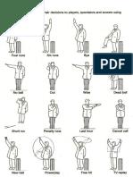 cricket-umpire-signals