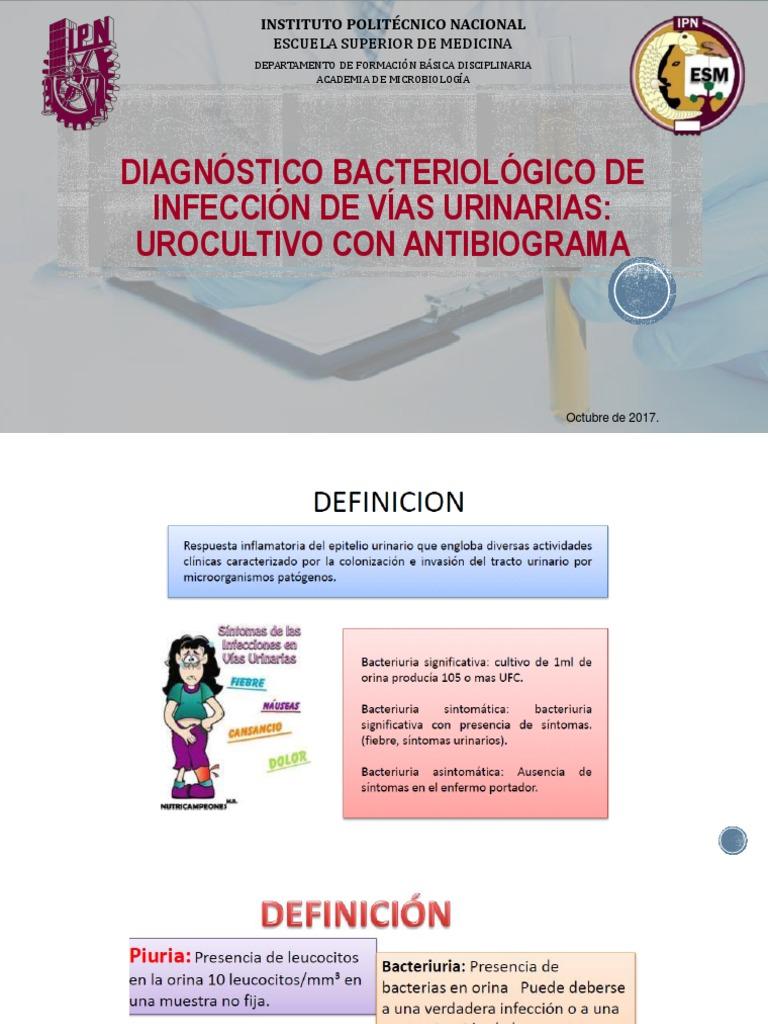 Que es un urocultivo con antibiograma