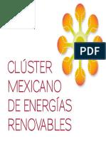 01 Cluster Mexicano de ER Ing. Vicente Estrada