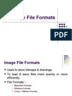 12438_9 Image File Formats