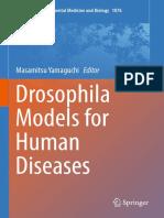 Drosophila Models for Human Diseases
