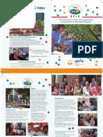 Brochure EFIS