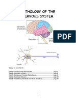 Pathology of the Nervous System.pdf