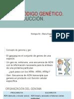 17 Cod Genetico Traduccion
