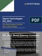 SVI_MGC_PPT.pdf