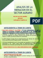 341970634 Analisis de La Remuneracion en El Sector Agrario