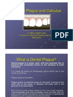 Dental Plaque and Calculus