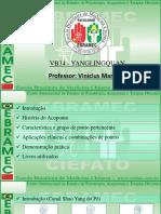 Protocolos Clássicos de Acupuntura Análise e Aplicações