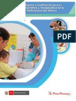 Manual REGISTRO DE INFORMACION HIS Anemia_100119
