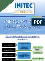 ENFOQUES Y ÁREAS DE LA PSICOLOGÍA.pdf
