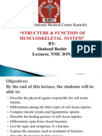 Muscloskeletal Disorders.