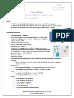 Data Sheet Bombas Dosificadoras de Regulación Manual-signed