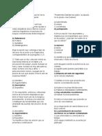 Español_Lite.docx