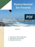 Reserva-San-Fernando-Ica (1).ppt