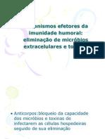 Mecanismos_ efetores_ da_ imunidade_ humoral - orgãos e sistemas
