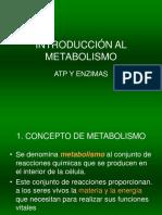 Introduccion Al Metabolismo