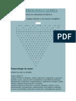 IRIDOLOGIA MAPA 6
