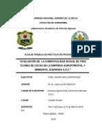 PPP AVILA corregido.docx