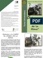 DIPTICO_ARBOL_DE_LA_MORA_2015.pdf