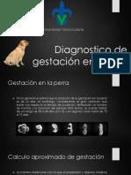 Diagnostico de Gestación