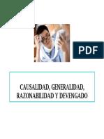 CAUSALIDAD, GENERALIDAD, RAZONAB Y DEVENGADO.pdf